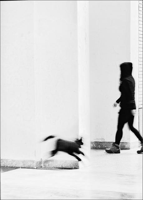 F_DSC9784-1-2014-11-15-Nikon D800E-Nikkor 28-300mm-May Lee 廖藹淳