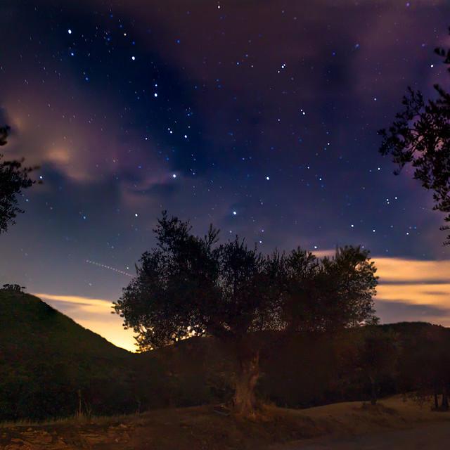 Umbrian night