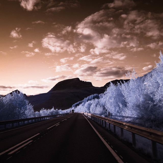 Infrared of the day 87