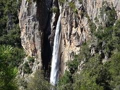 Cascade de Piscia di Ghjaddicu