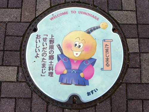 Uenohara Yamanashi, manhole cover 3 (山梨県上野原市のマンホール3)