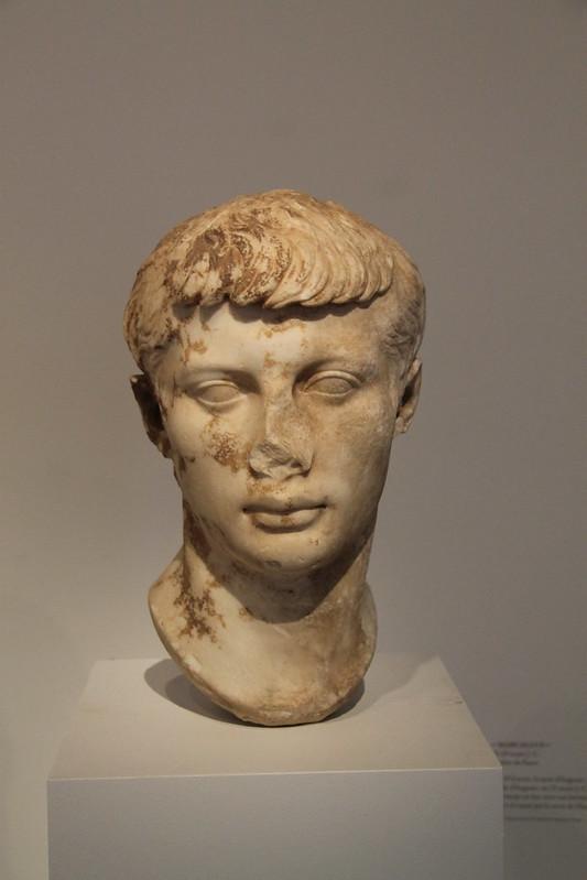 Head of Marcellus