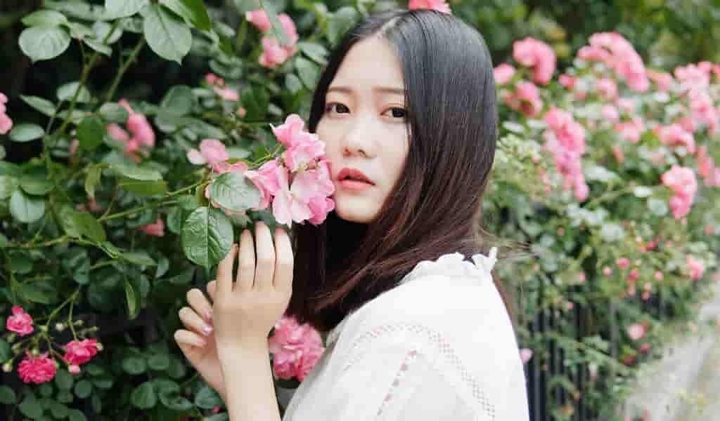 Les confinements dus au COVID-19 en Chine ont avancé la floraison du printemps