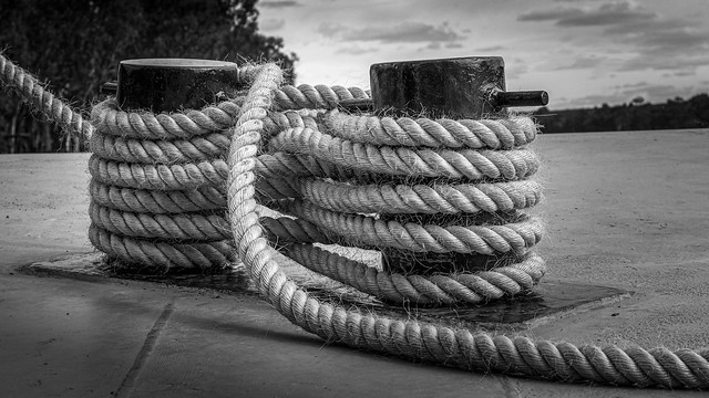 Got Knotted (B&W version)