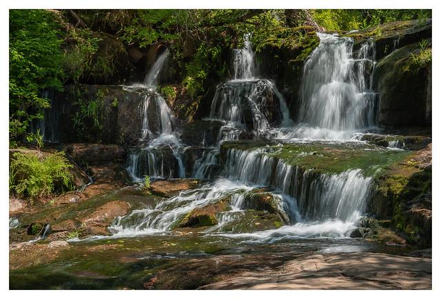 Alsea Falls_Z624008