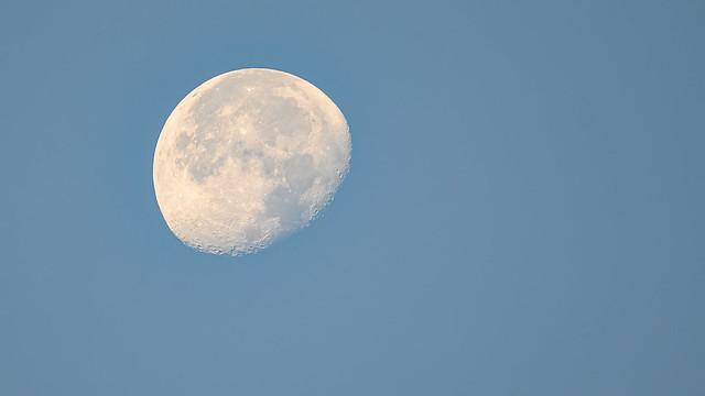 La lluna a l'albada. The moon at dawn