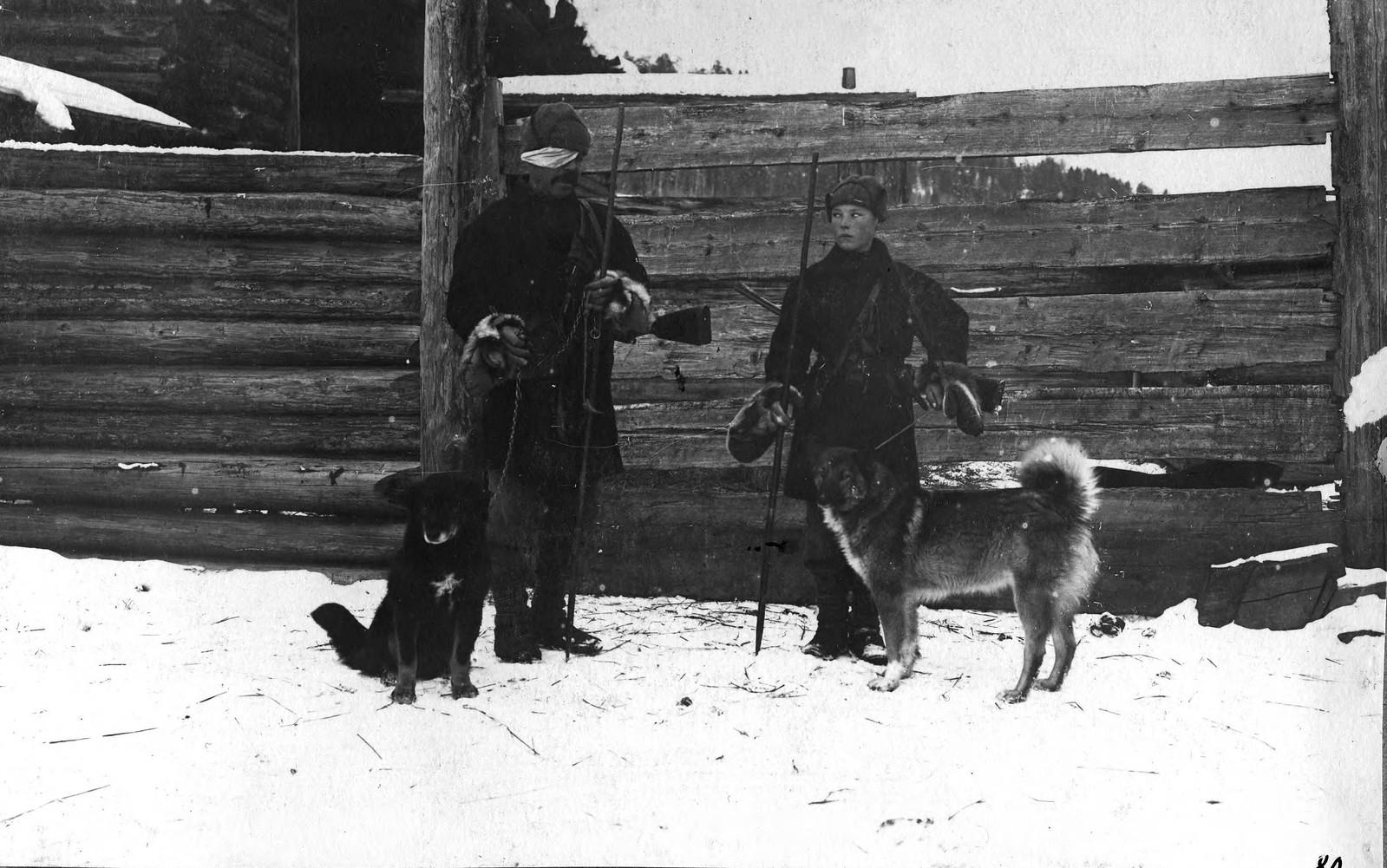Лайки, идущие по медведю из деревни Чертовской Жигаловского района.