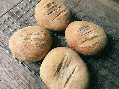 Flat Breads