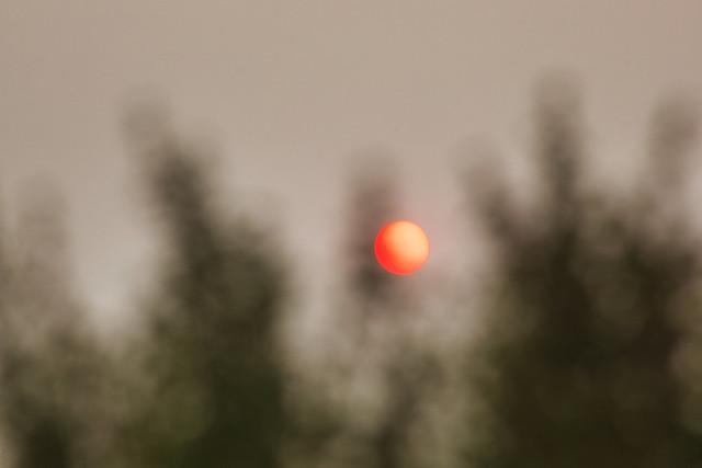 Explored - California's Wildfire Sun