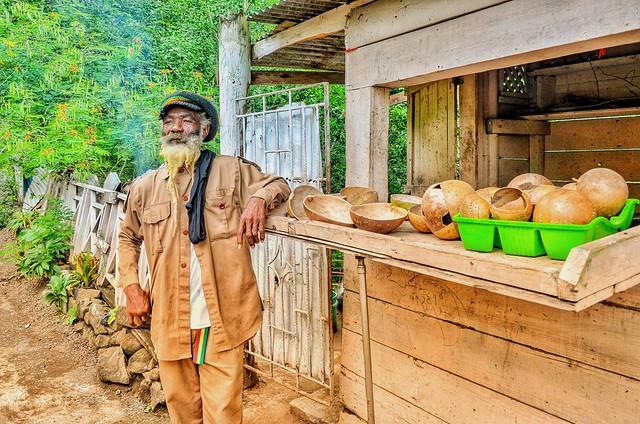 Rasta Man Mitchie's Roadside Shack on Road to Blue Mountains, Jamaica