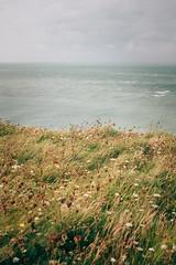 By the sea. Cap Gris-Nez, France