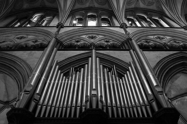 Canon EOS 60D - Monochrome - Salisbury Cathedral Organ Pipes