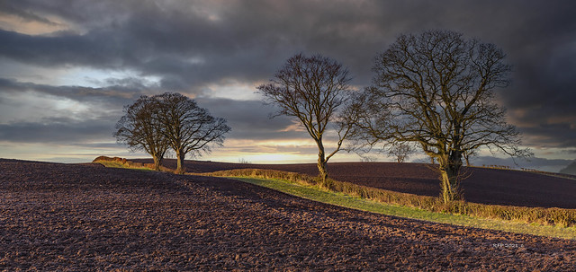 Over the Hill _MG_7398-Pano