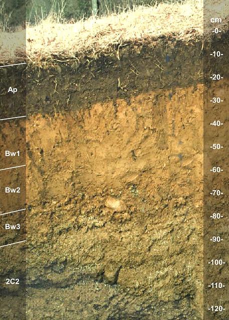Narragansett soil series