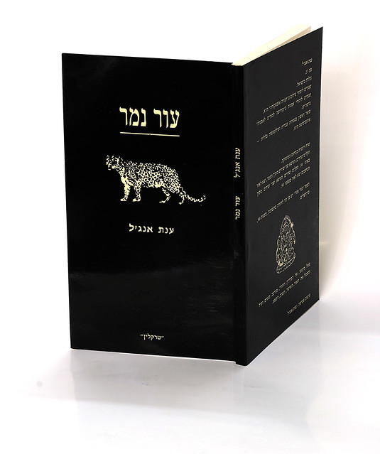 ספרים שירים ענת אנגל משוררת ישראלית אמנית מודרנית  יוצרת עכשווית האמנית הישראלית המשוררת העכשווית היוצרת המודרנית anat angel