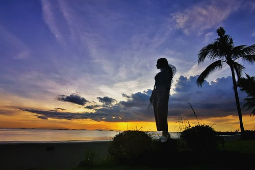 manilabay sunset clouds silhouette coconuttree birthdaydinner sofitelplaza friendship sky whynot huaweip30 manila philippines beautifulcolorsintheback wpdpeople
