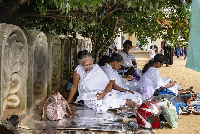 Waiting for Enlightenment at Kelaniya, Cololmbo, Srilanka
