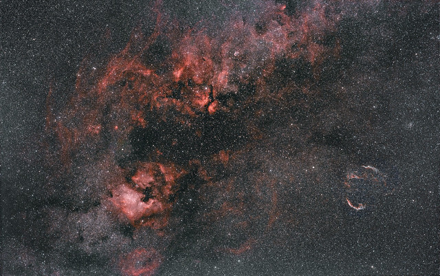 Part of Cygnus (DNB)