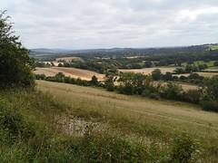 View over Surrey Hills
