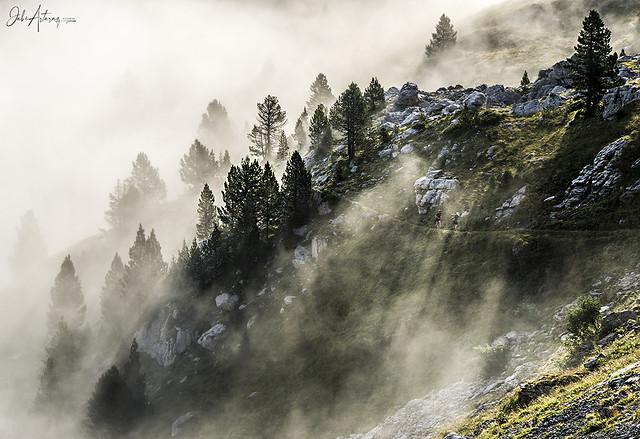 Montaña, niebla y runners