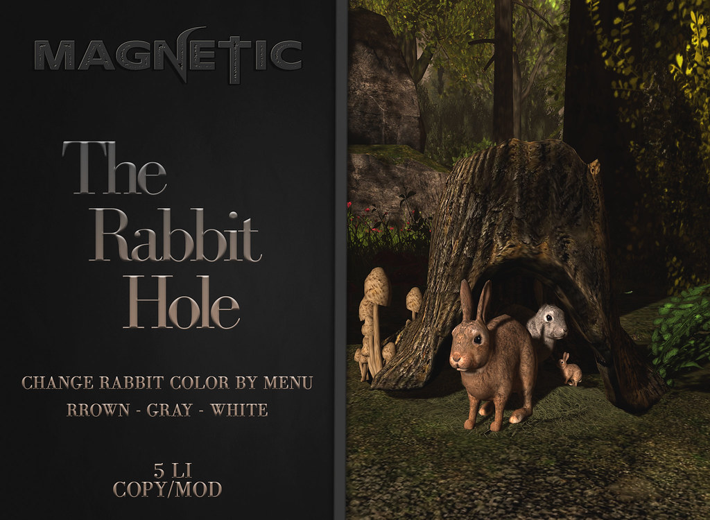 Magnetic – The Rabbit Hole