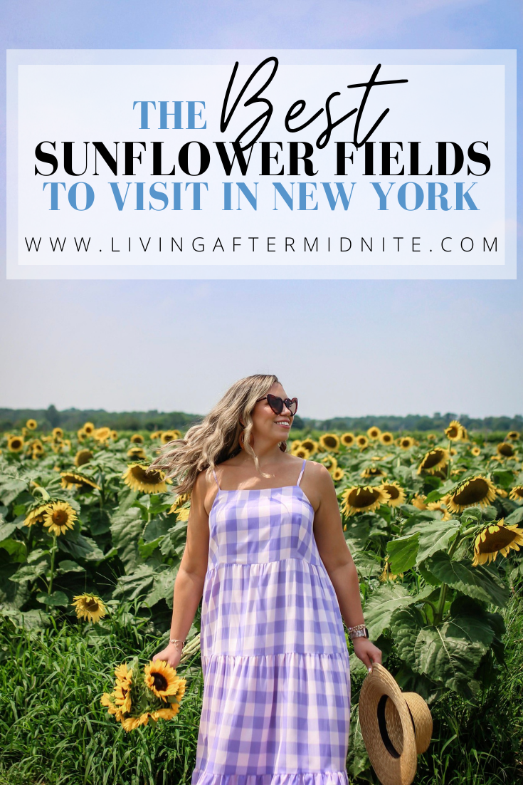 The Best Sunflower Fields to Visit in New York