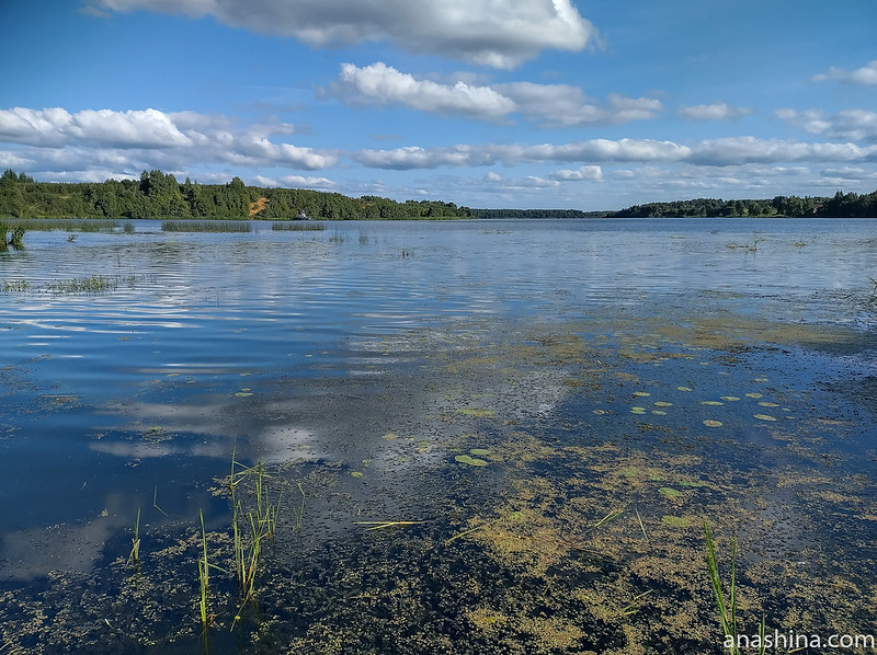 Волга, Кашинка