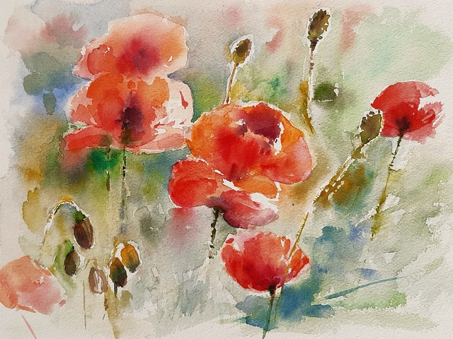 coquelicots n°4