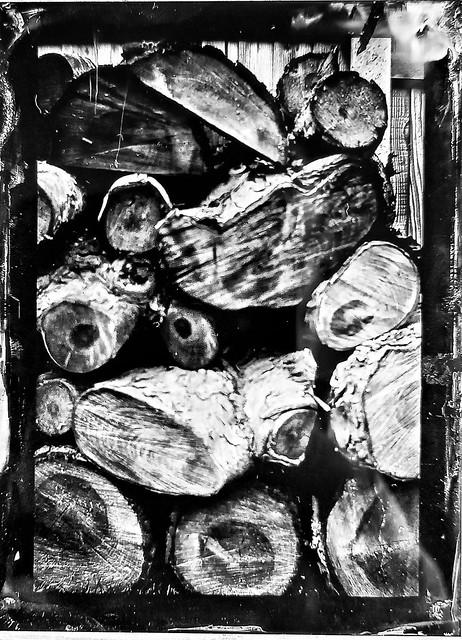 Wood Pile on Wet Plate Tintype