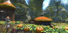 Botanist in Gridania Pumpkin Patch