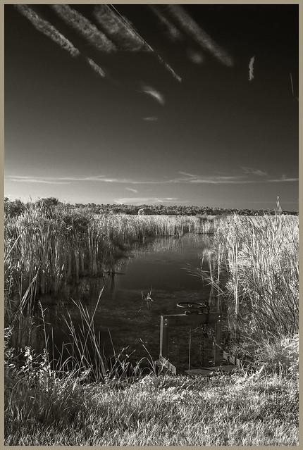 Lake Woodruff IR #79 2021; Canal and Water Control Gate