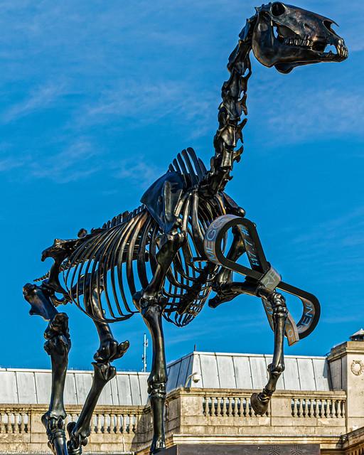 Fourth Plinth Sculpture (2015) (2) Gift Horse by Hans Haacke (Trafalgar Square - London) Canon EOS 7D & EF 70-300mm f4-5.6 L Zoom