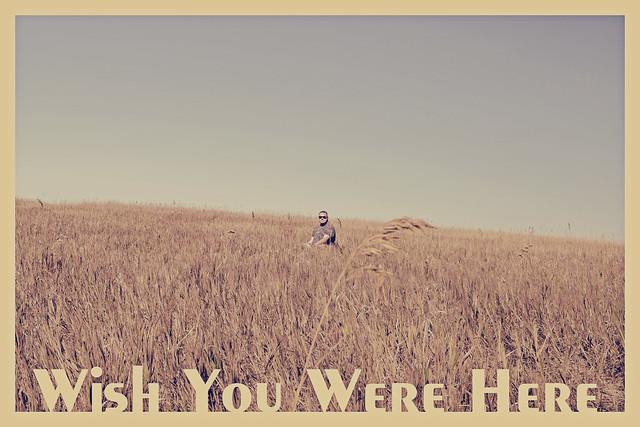 Wish You Were Here....