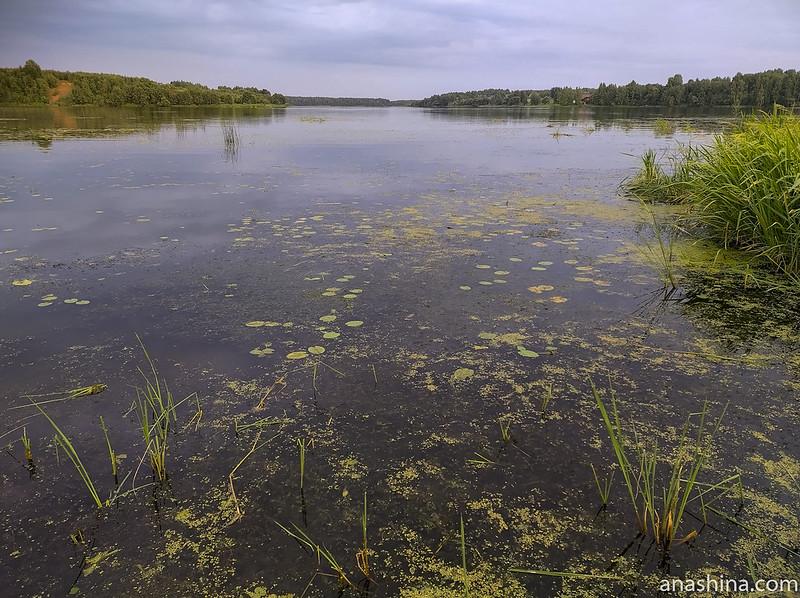 деревня Маслово, Волга