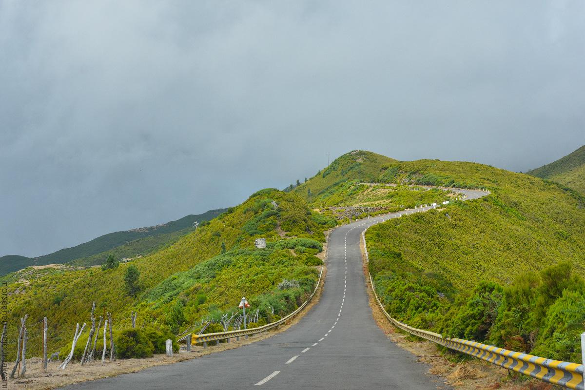 Madeira-Beginning-(35)