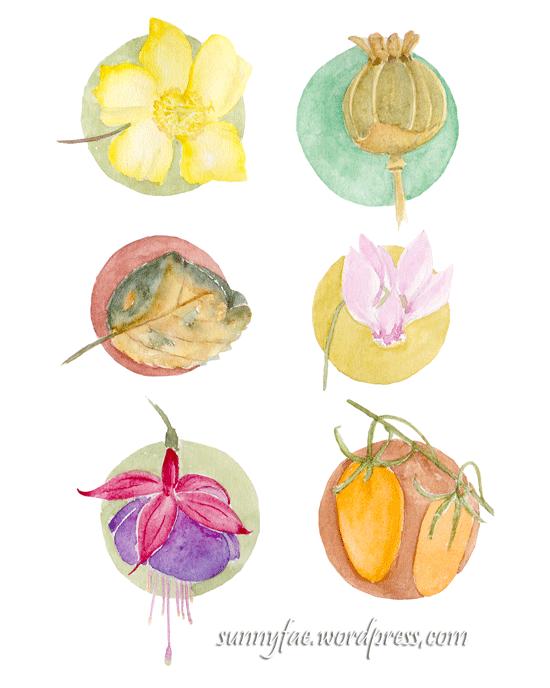 watercolour garden snapshots
