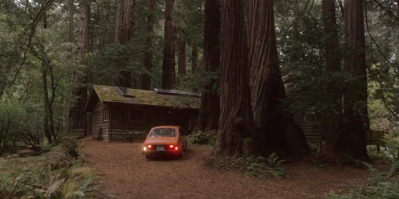 Dr Rhodes cabin in the woods