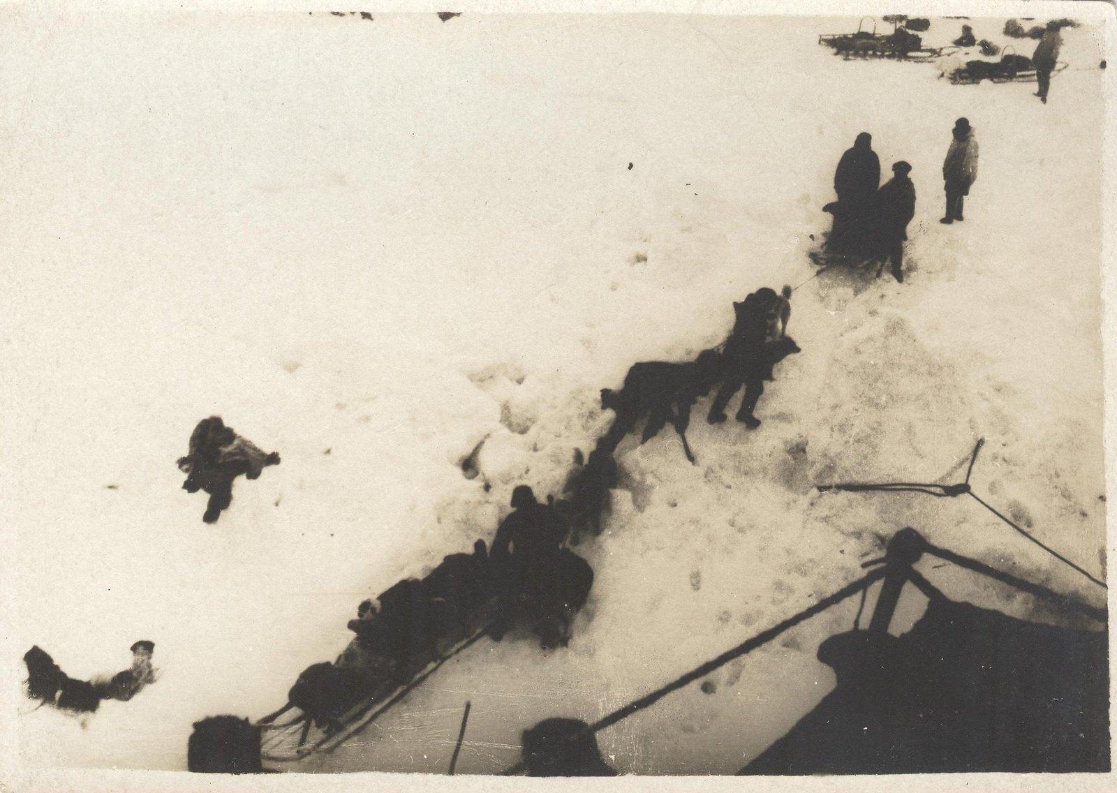 1934. Экспедиция по спасению челюскинцев. Погрузка на борт «Смоленска» больных челюскинцев