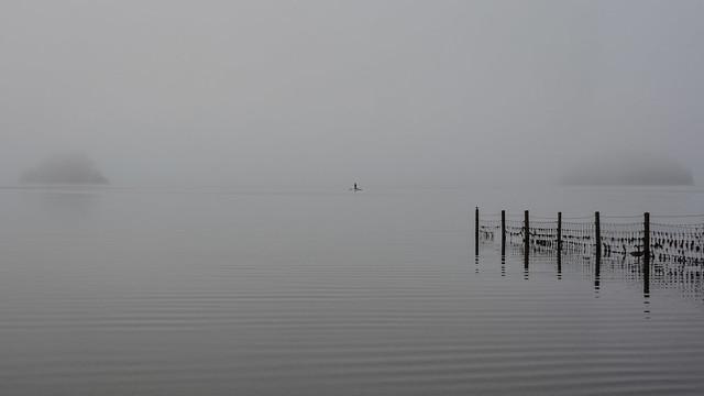 On a very misty morning