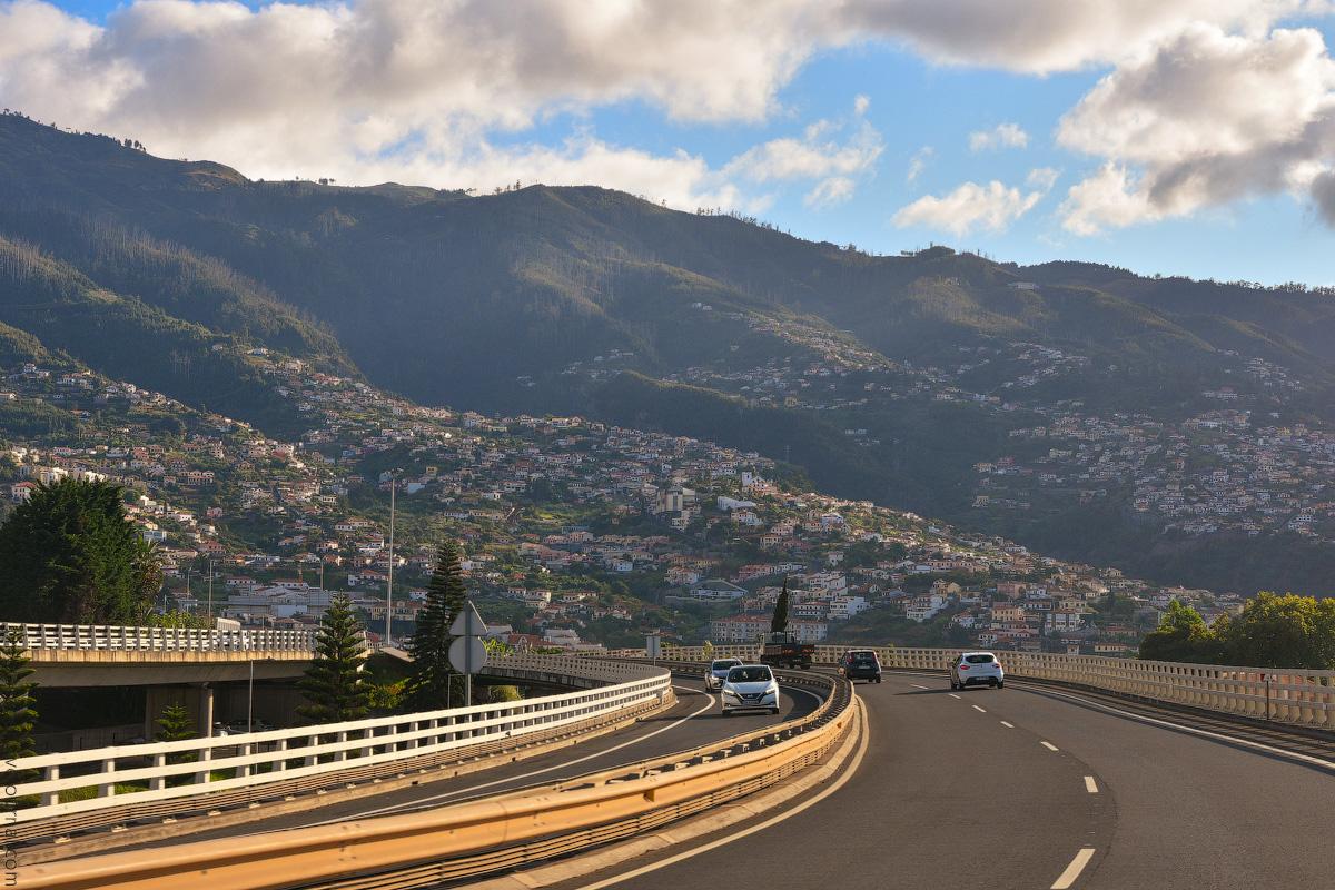 Madeira-Beginning-(38)