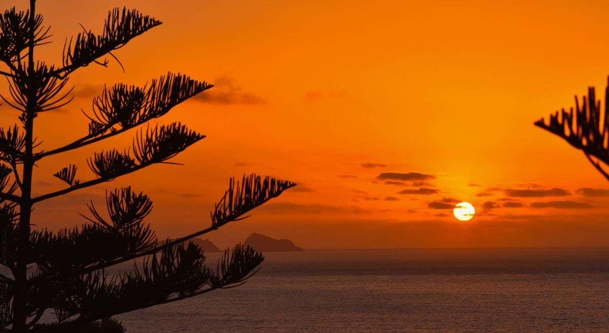 Madeira-Beginning-(13)
