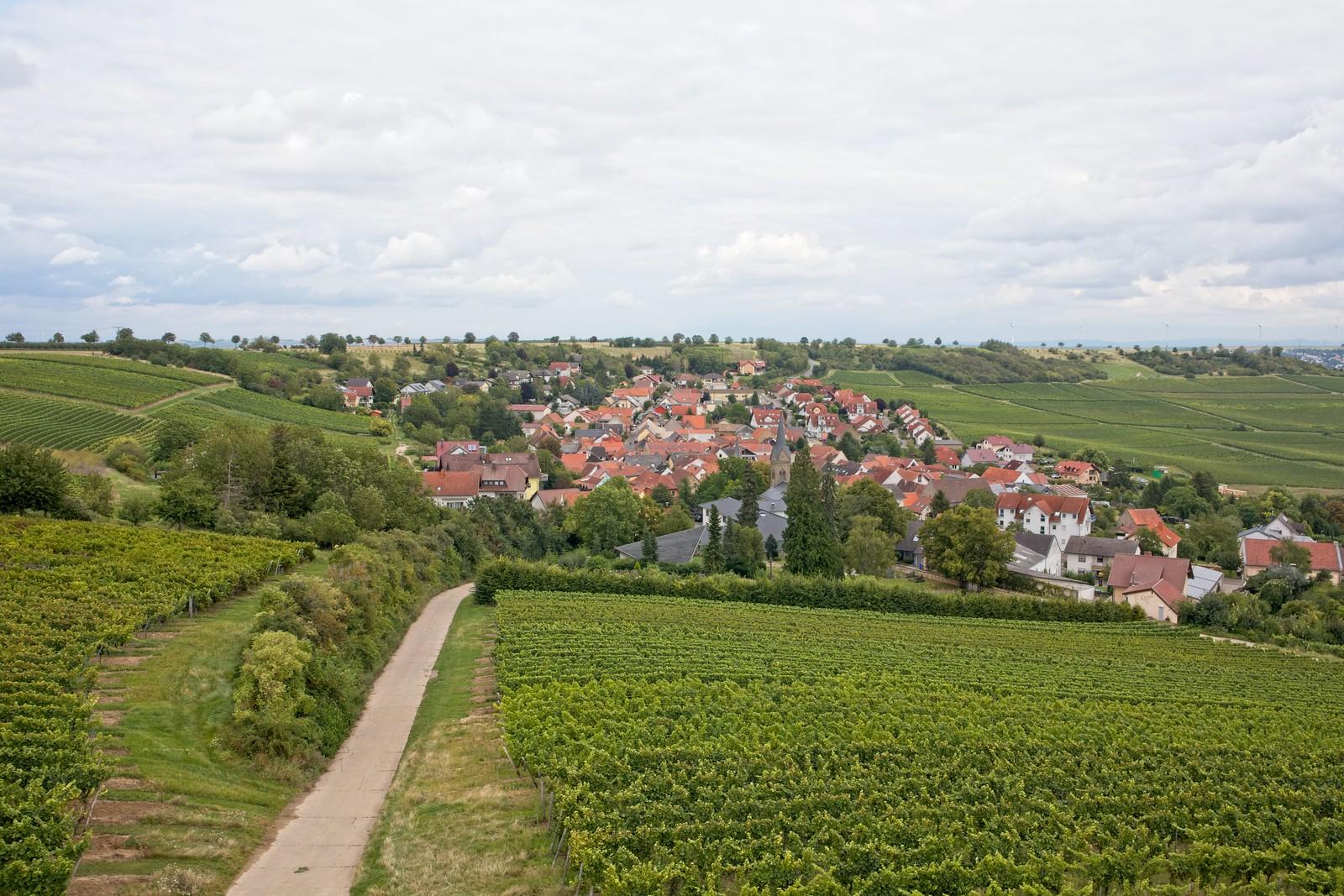 Blick auf Vendersheim vom Vendersheimer Turm