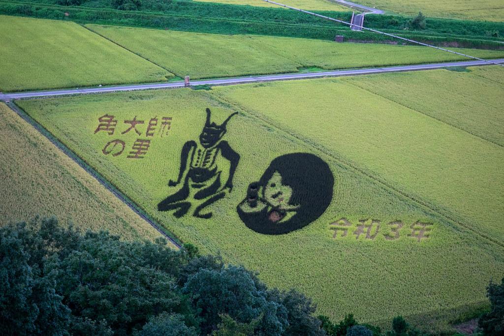 琵琶湖ドライブ
