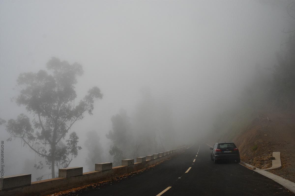 Madeira-Beginning-(34)