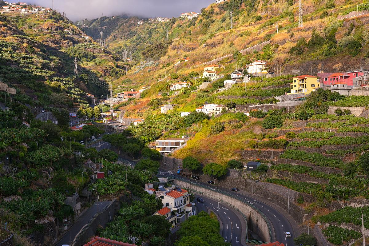 Madeira-Beginning-(29)