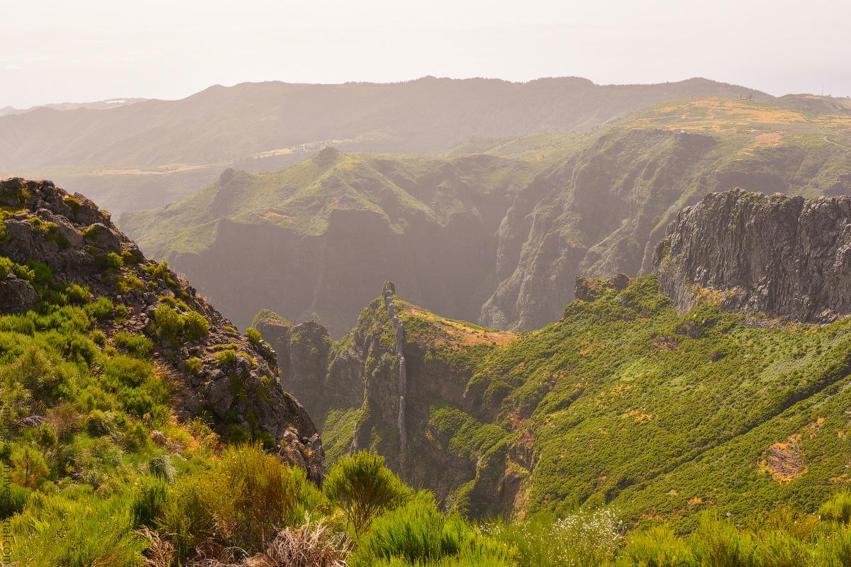 Madeira-Beginning-(4)
