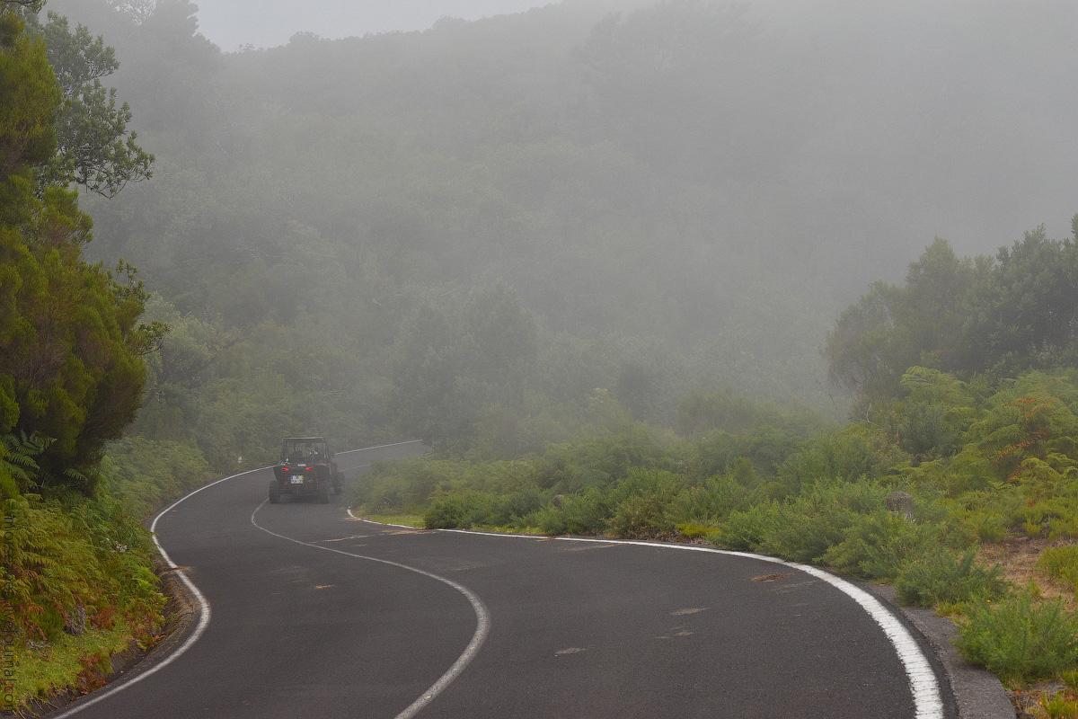 Madeira-Beginning-(45)