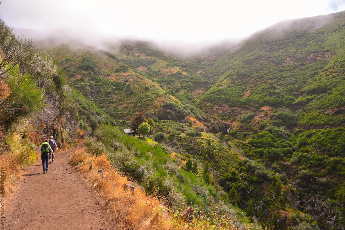 Madeira-Beginning-(30)