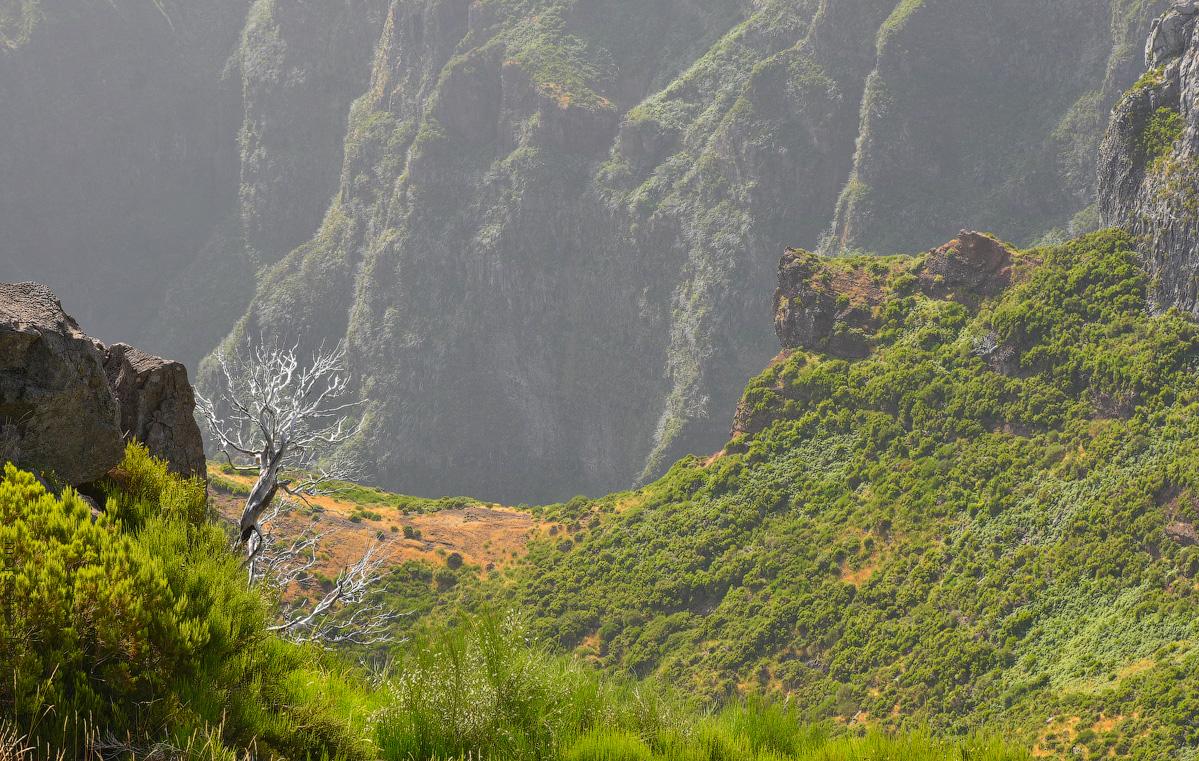 Madeira-Beginning-(5)