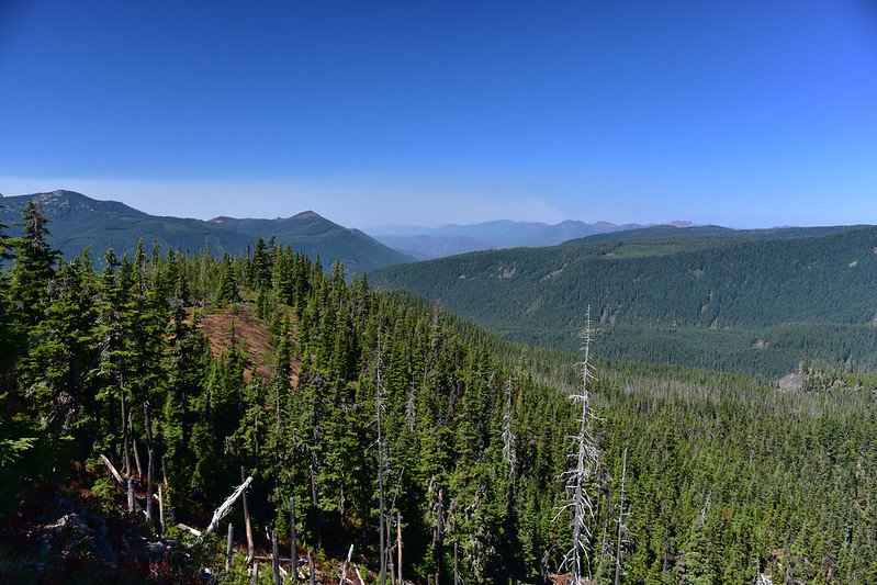 View from Marion Mountain
